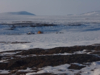 Teams waiting while we look for caribou